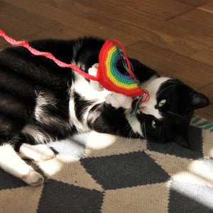 Rainbow Catnip Cat Toy