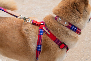 Shuka Red Dog Harness