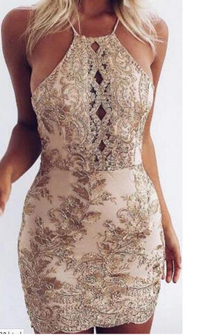 Embroidery Lace Hollow Bodycon Dress