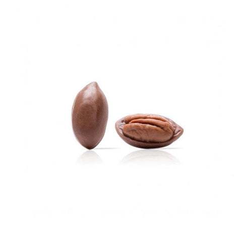 CHOCOLATE PECAN NUT IN SHELL DOBLA