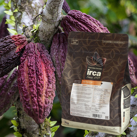 SINGLE-ORIGIN CHOCOLATE DARK EQUATEUR 60% (37/39) IRCA