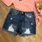 Hazel Stripe Shorts
