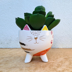 Abstract Cat Planter