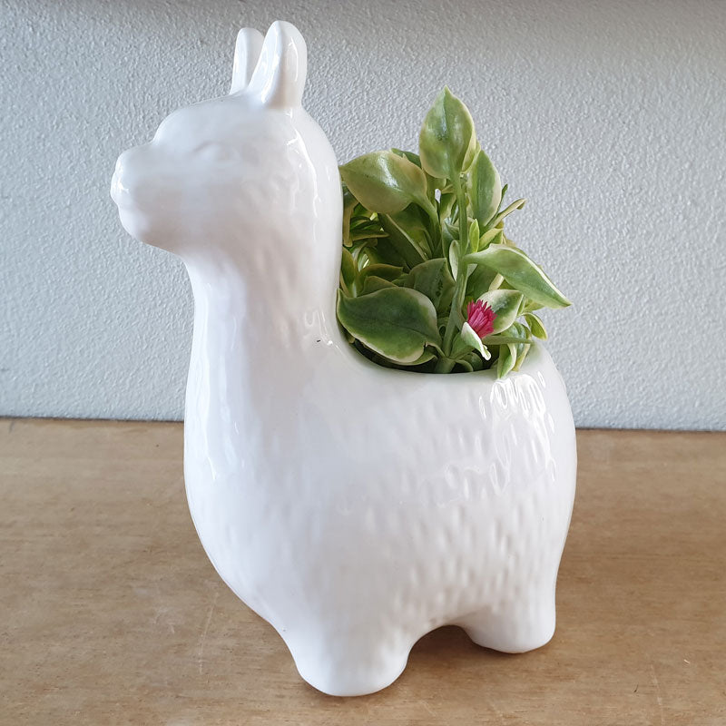 Alpaca Planter - White - The Chic Nest