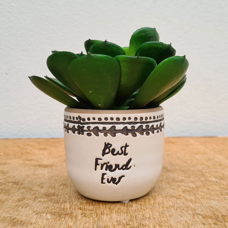 Best Friend Ever Planter