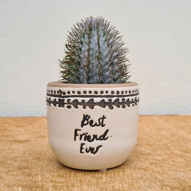 Best Friend Ever Planter - Small