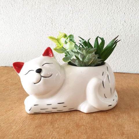 Cat Planter With Succulents - The Chic Nest