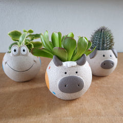 Frog Planter - The Chic Nest