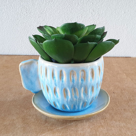 Cup And Saucer Tea Party Planter - Blue