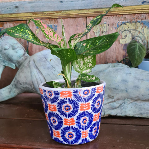 Daisy Ceramic Planter - Navy
