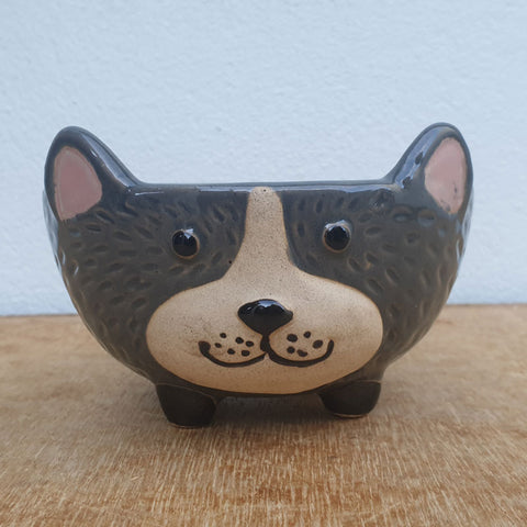 Dog Ceramic Bowl - Grey