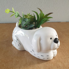 Dog Planter With Succulents - The Chic Nest