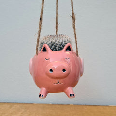 Flying Pink Pig Hanging Planter