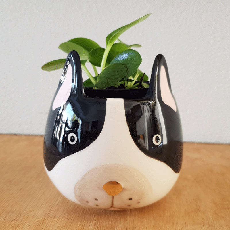 French Bulldog Planter - The Chic Nest