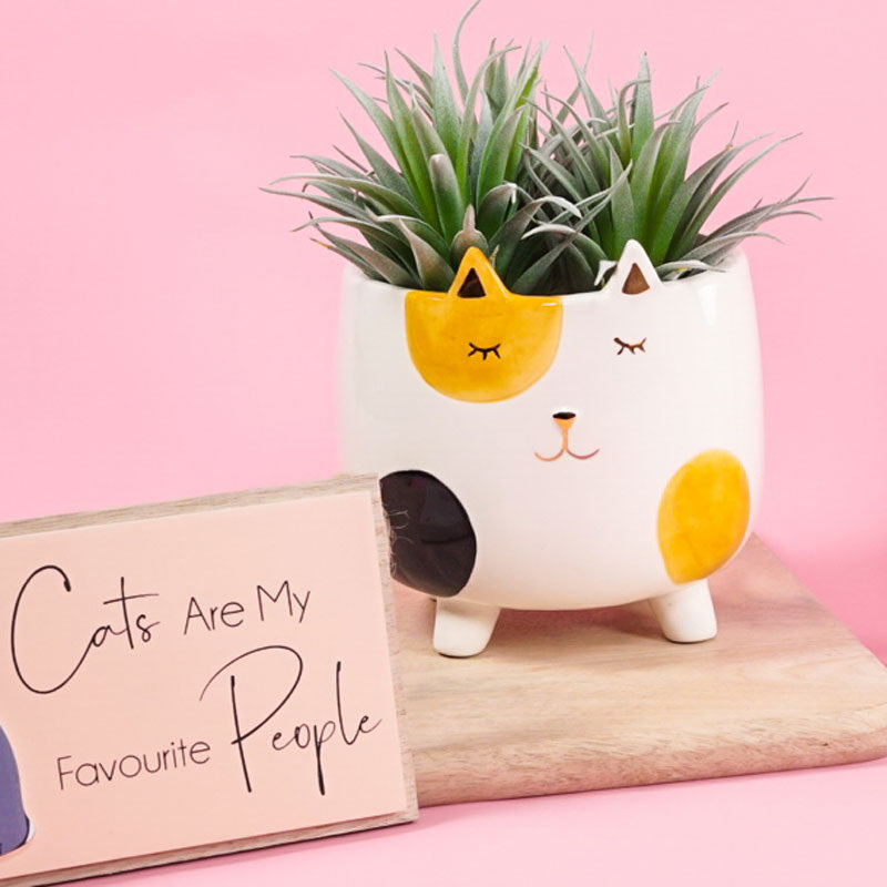 Ginger Cat Planter