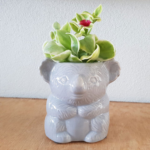 Grey Koala Planter - The Chic Nest