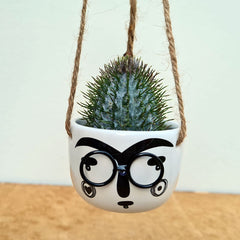 Hanging Face Mini Planter With Metal Glasses  - Small