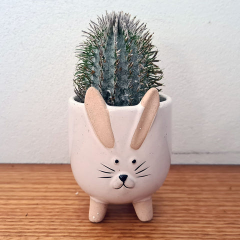 Little Bunny Planter - White