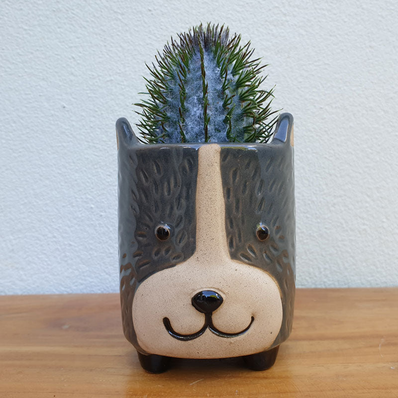 Little Grey Dog Planter - The Chic Nest