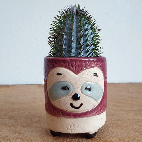 Little Sloth Planter - The Chic Nest