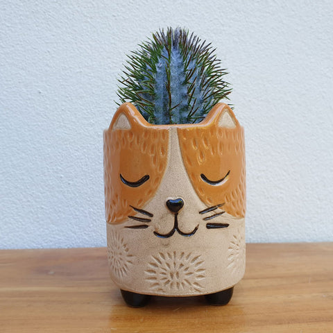 Little Cat Planter - The Chic Nest