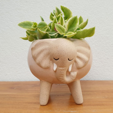 Little Elephant Planter On Legs - The Chic Nest