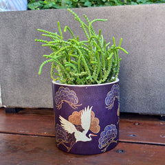 Navy Cranes Planter Pot - Patterned