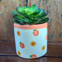 Peach Fruit Ceramic Planter
