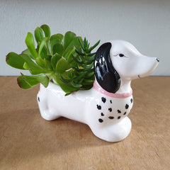 Sausage Dog Planter - The Chic Nest