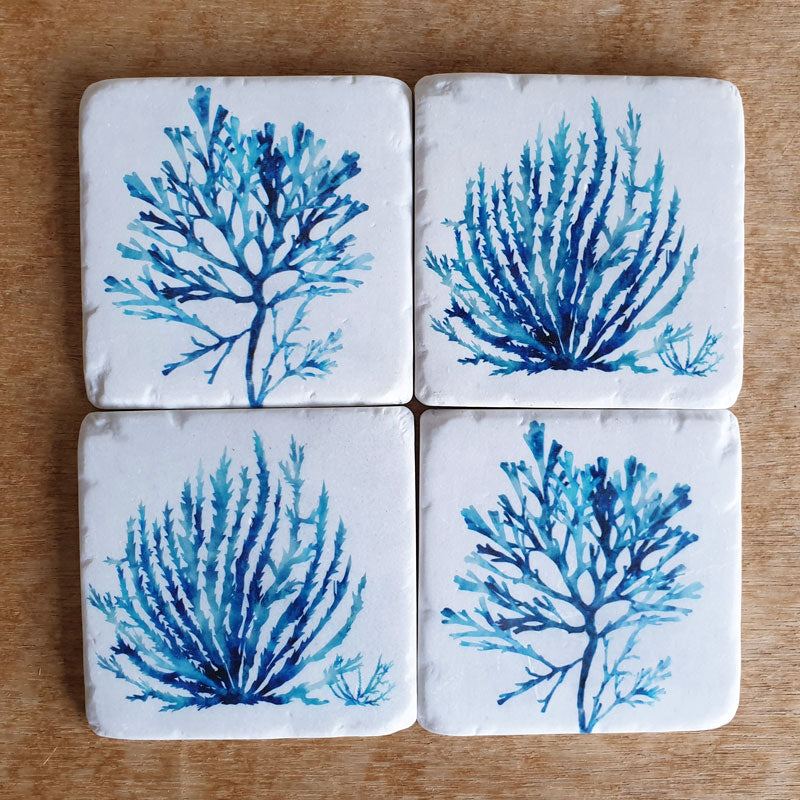 Coral Coastal Set of 4 Coasters
