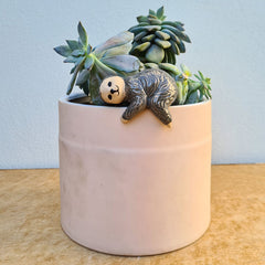 Sloth Pot Hanger - Green or Grey