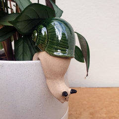 Snail Pot Hanger - Green or Grey