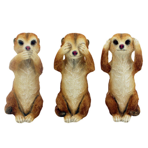 Three Wise Cats - Meerkats - The Chic Nest