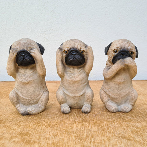 Three Wise Pugs