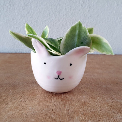 Tiny Bunny Planter