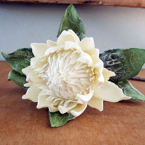 Waratah Flower Stem White 90cm