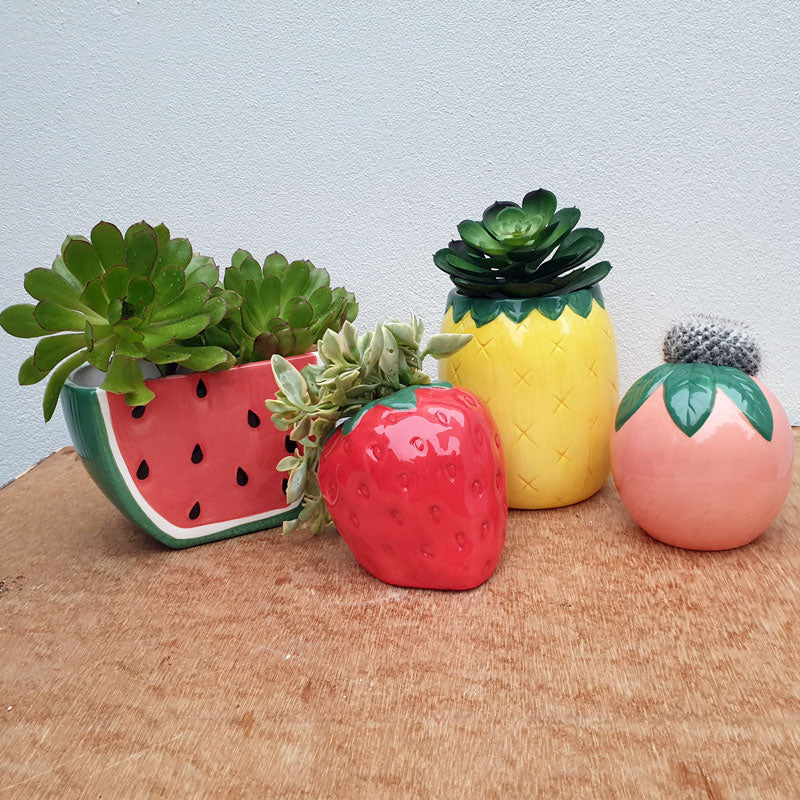 Pineapple Ceramic Planter