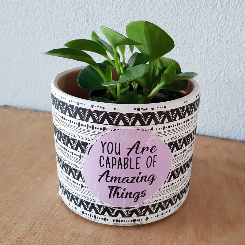 You Are Capable Of Amazing Things Planter