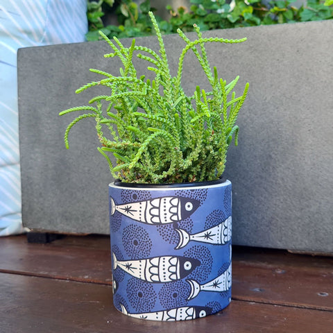 Aquata Ceramic Planter Pot - Blue