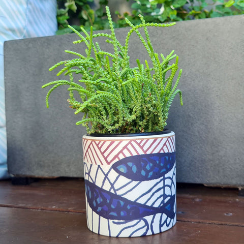 Aquata Ceramic Planter Pot - White