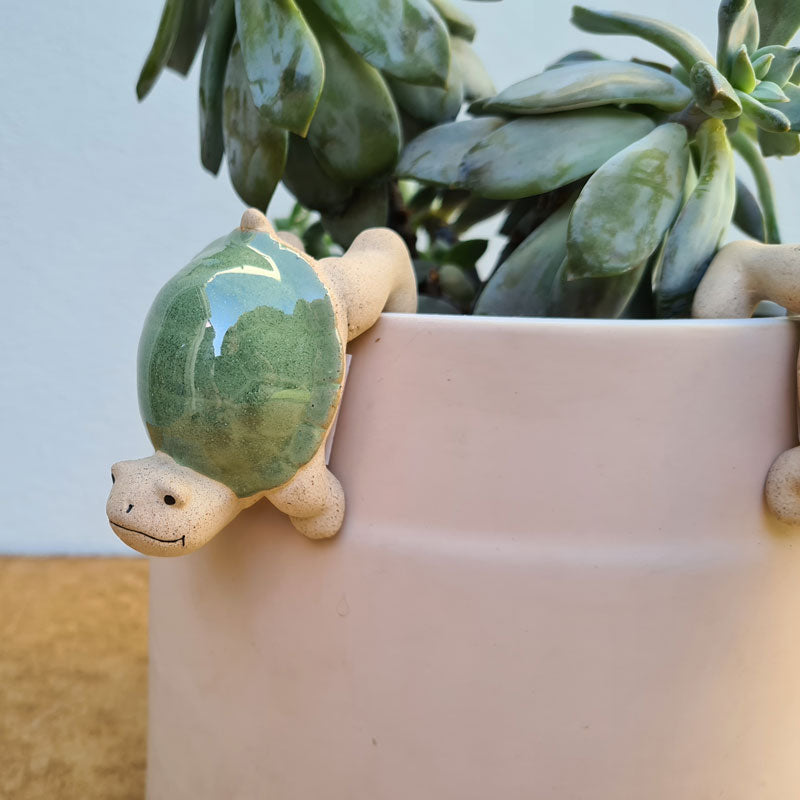 Turtle Pot Hanger