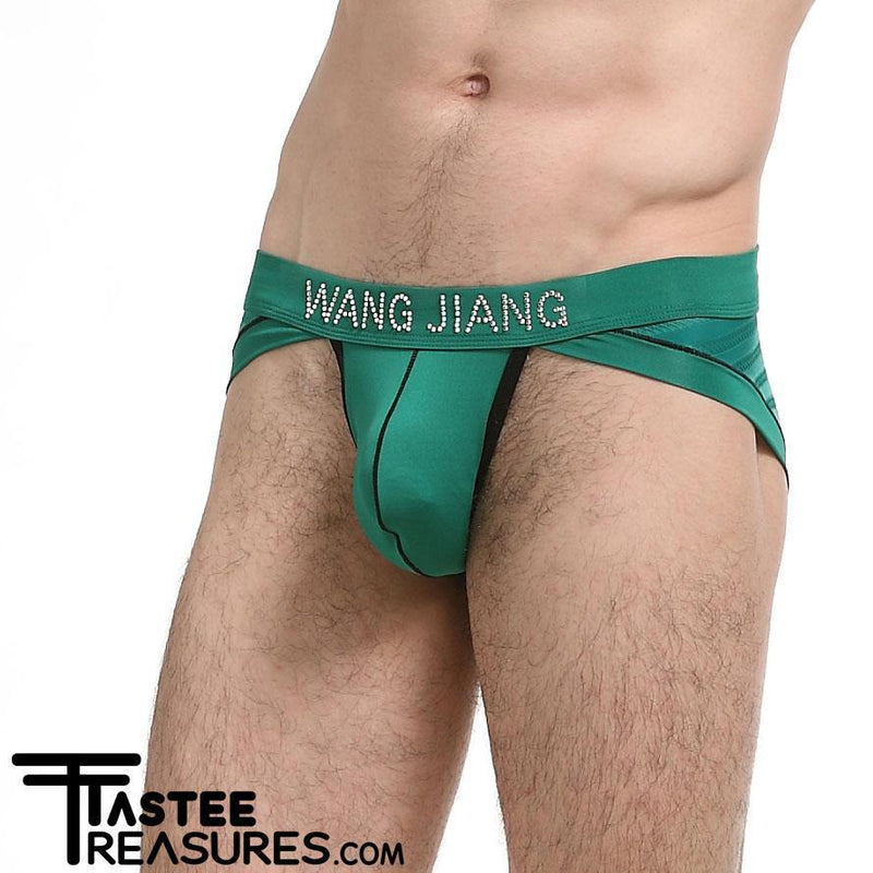 Green Diamond Stud Bikini Briefs Briefs TasteeTreasures 26in-28in Green