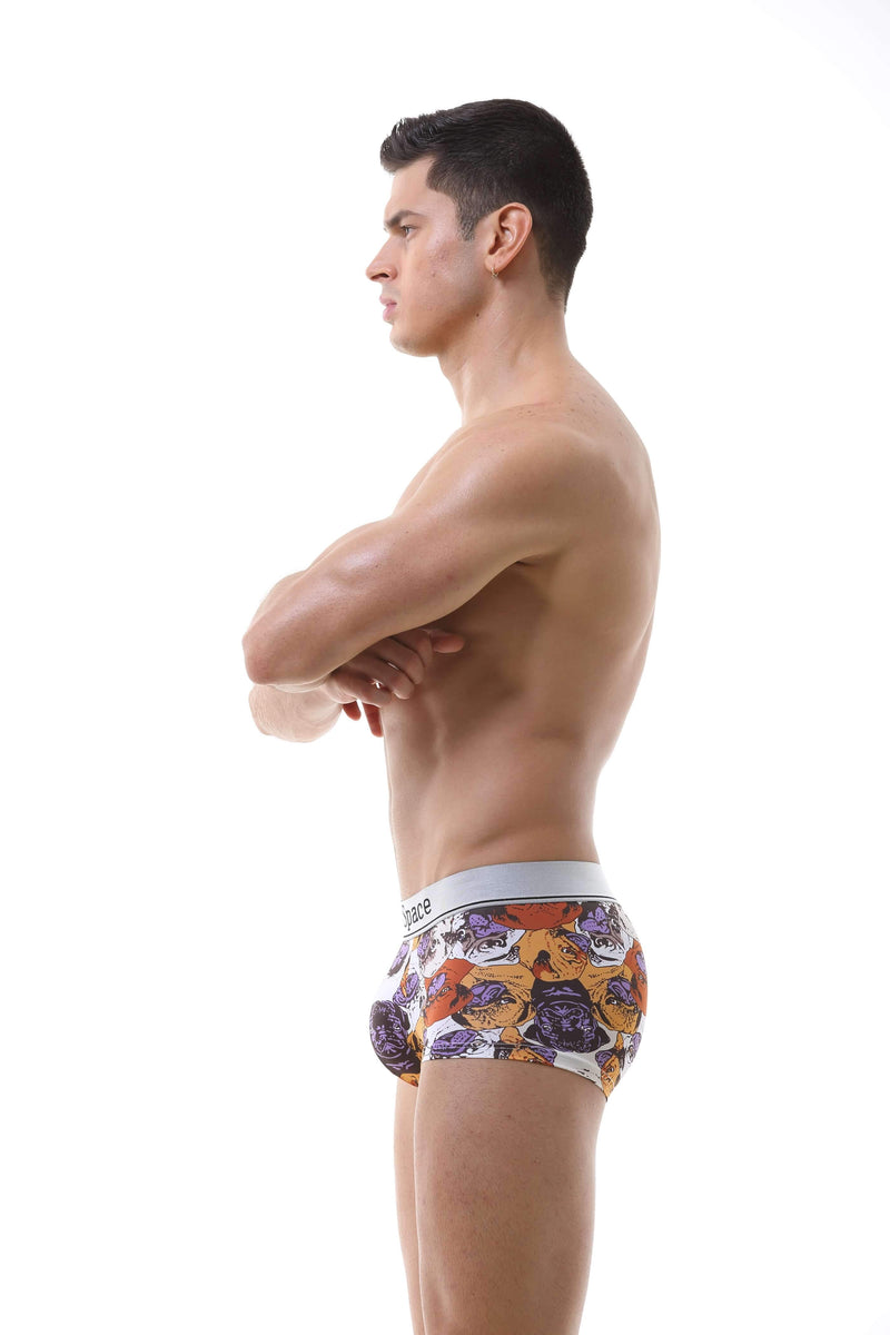Pug Boxer Briefs Trunks TasteeTreasures