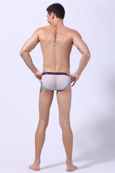 Purple Sheer Bottom Briefs Briefs TasteeTreasures