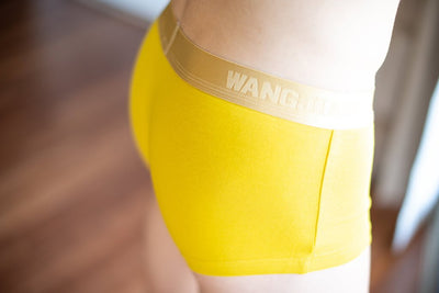 WJ Gold Band Boxer Briefs - Yellow Boxer Briefs TasteeTreasures