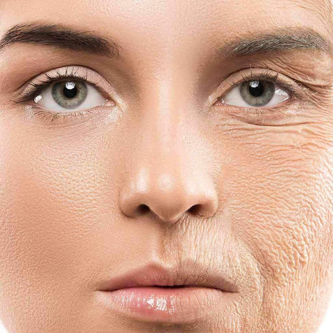 The Difference Between Collagen and Collagen Peptides