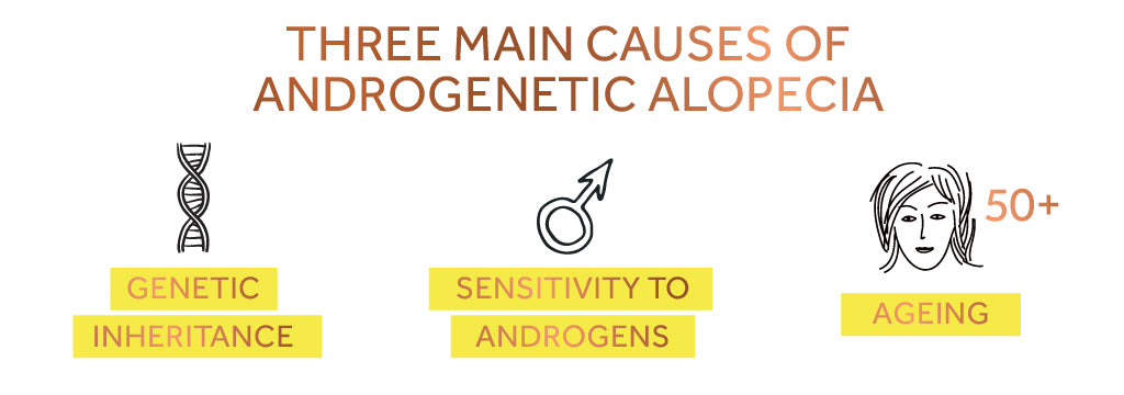 Graphic showing how age, androgens and genetics can cause androgenetic alopecia