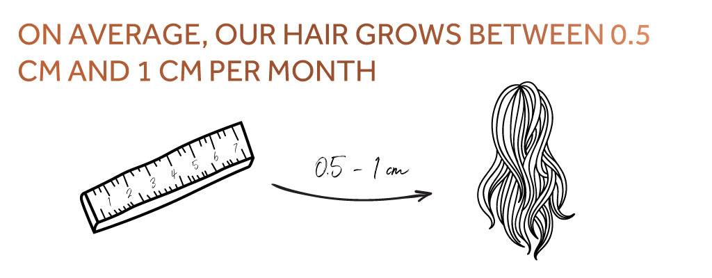 Graphic showing how hair grows on average 0.5-1 centimetre per month