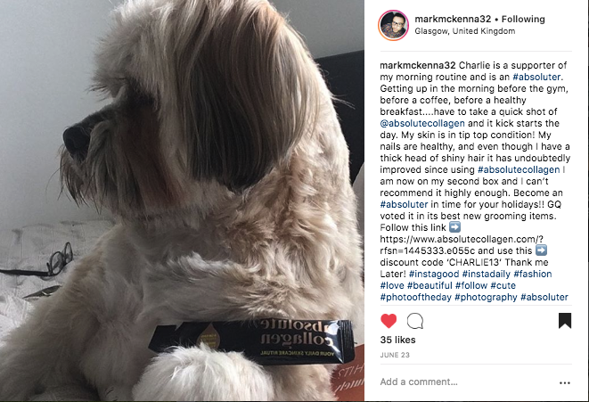 Charlie the dog loves Absolute Collagen's drinkable supplements