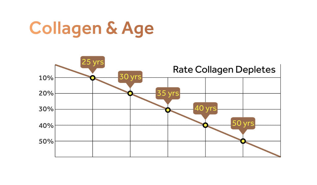 Graph indicating the rate at which collagen levels deplete according to age.